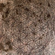 Osiron Flower of Life