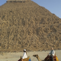 e10_egyptcamels