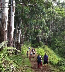 Divine Child Retreat, hiking Napali Coast, Kauai