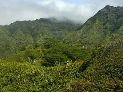 Makaleha, Kauai, HI